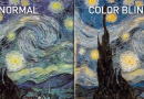 Mobile App Shows Vincent van Gogh Could Have Been Color Blind
